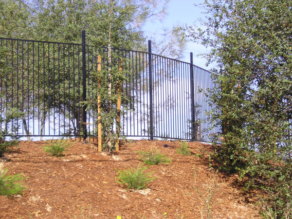 Simple Wrought Iron Fence Sacramento